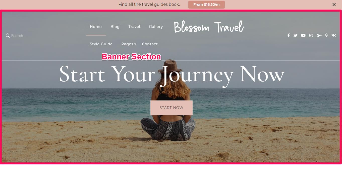 Blossom Travel Pro Banner section