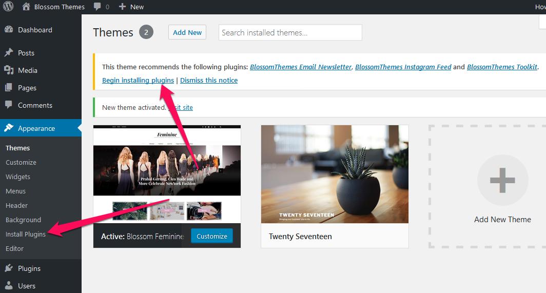 Install recommended plugins Blossom feminine pro