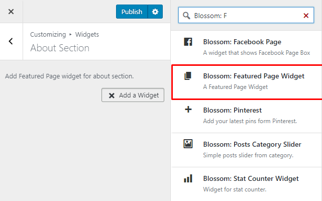 Select blossom featured widget