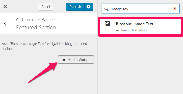 Select blossom image text widget