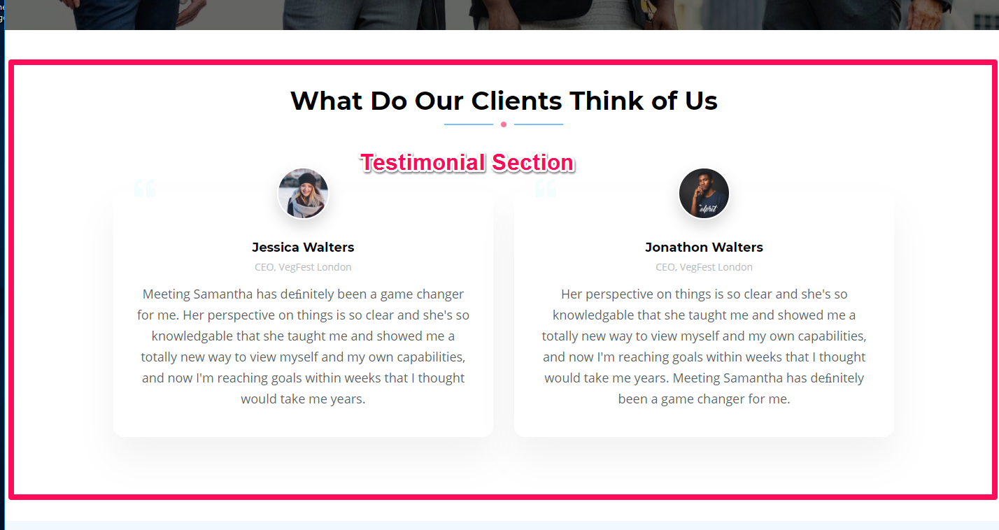 Testimonial Section Demo