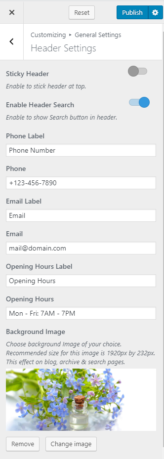 Add business details in header using Blossom spa pro