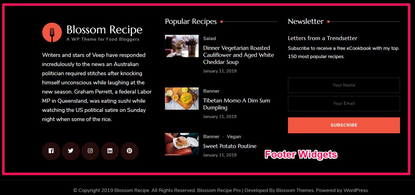 Footer widget area demo blossom recipe pro