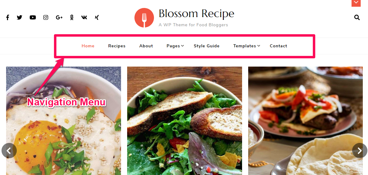 Navigation menu demo blossom recipe pro