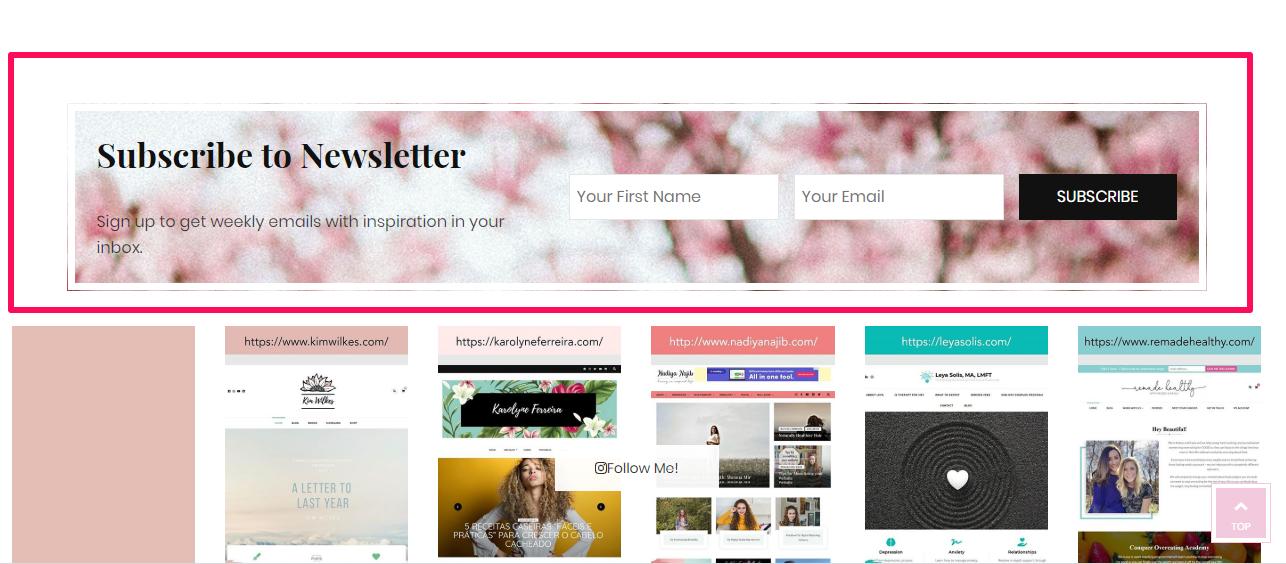 Newsletter section demo blossom feminine