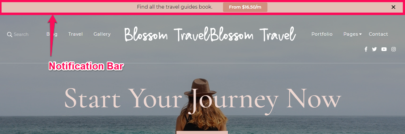 Notification bar demo blossom travel pro