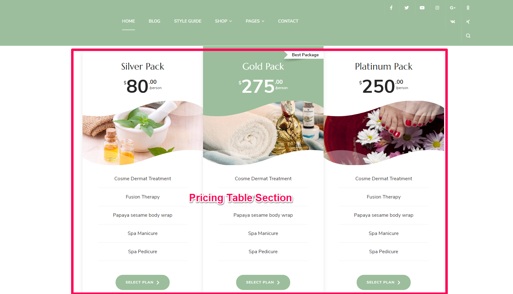 Pricing Table Section blossom spa pro