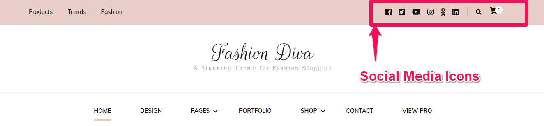 Social Media links fashion diva