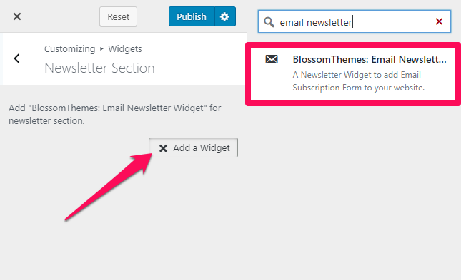 select blossom themes email newsletter