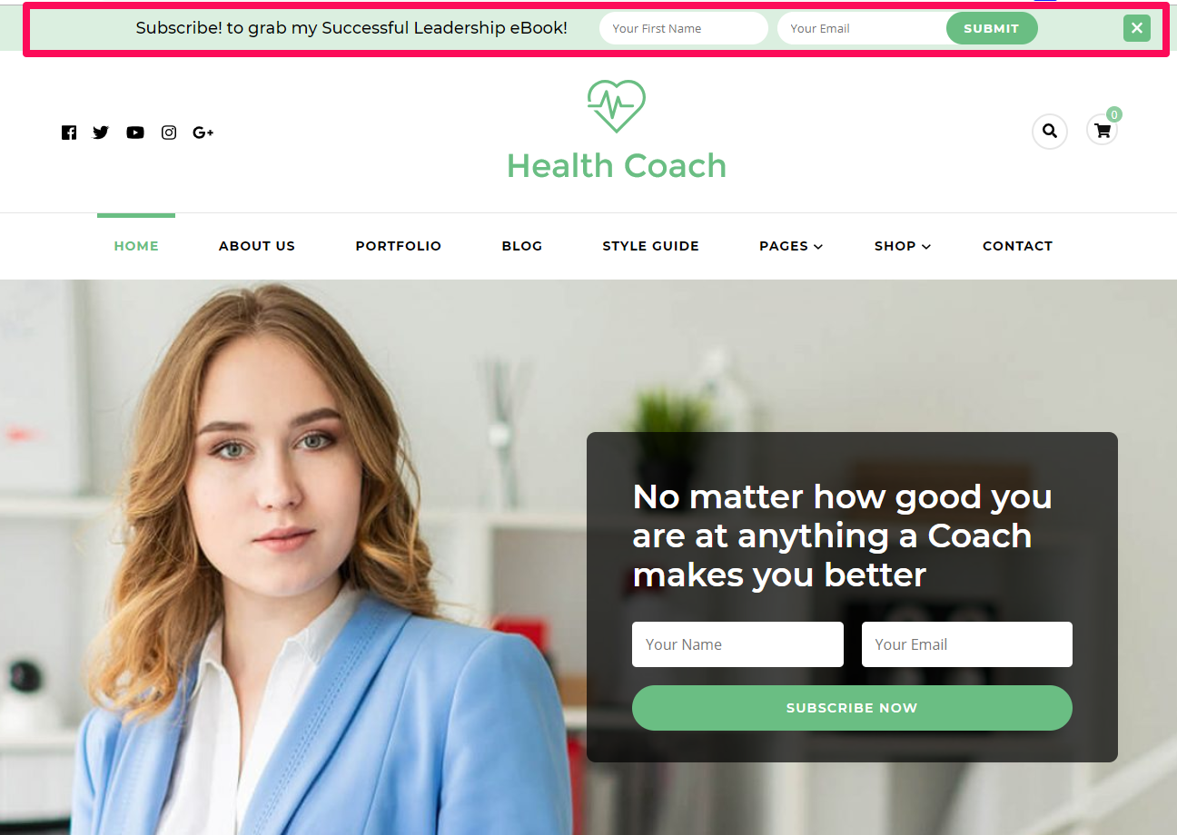 Header newsletter demo blossom health coach
