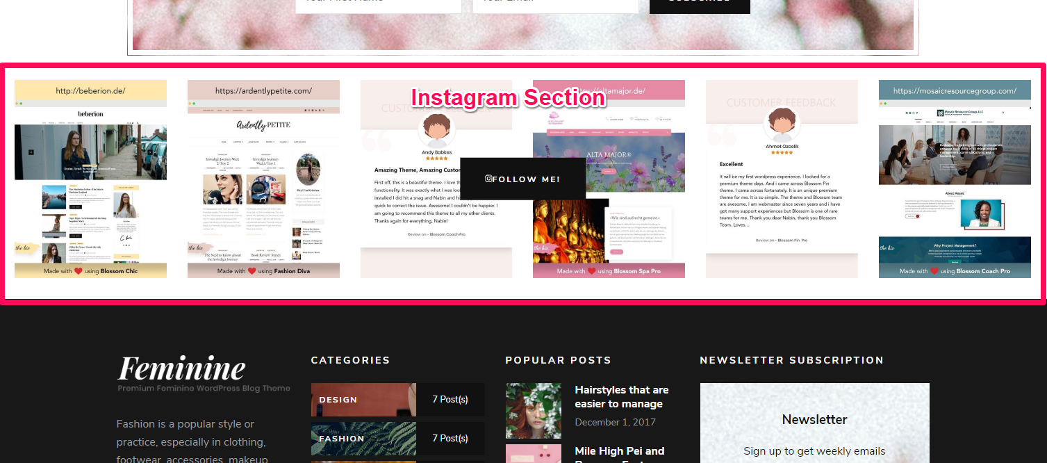 Instagram section demo blossom chic