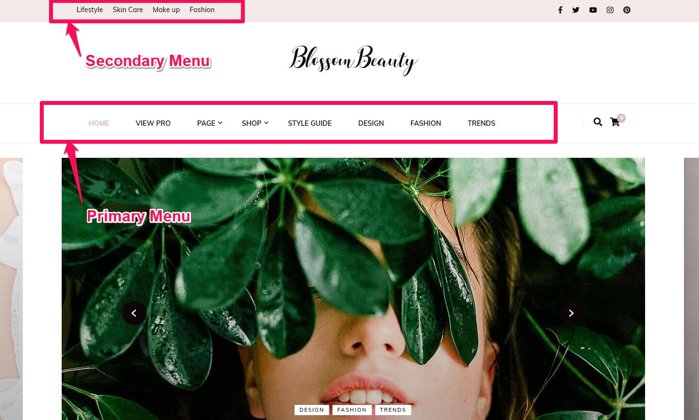 Navigation menus demo blossom beauty