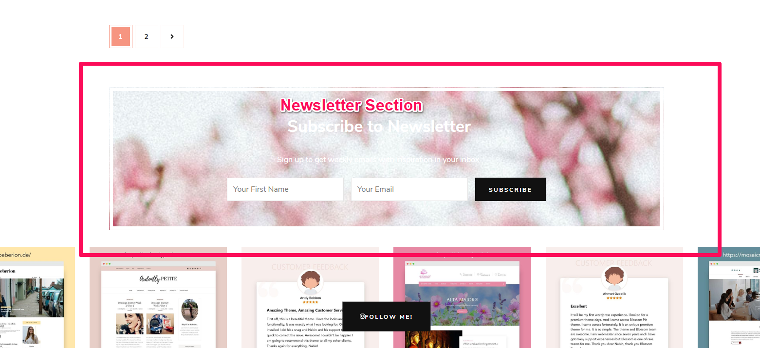 Newsletter section demo blossom chic