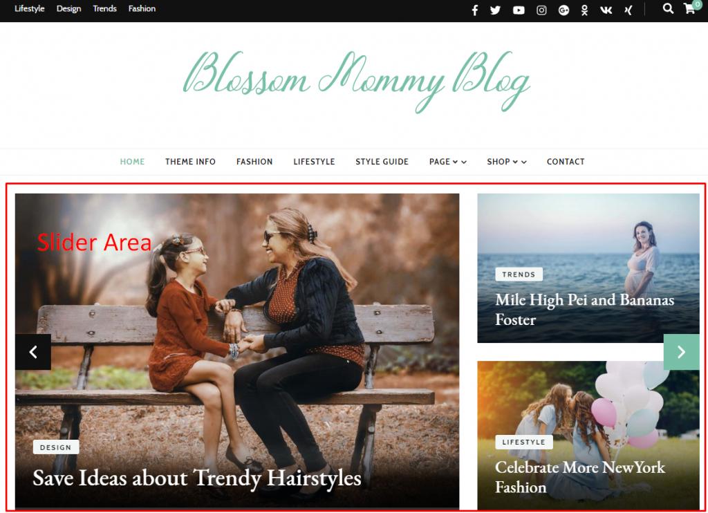 Slider section demo blossom mommy blog