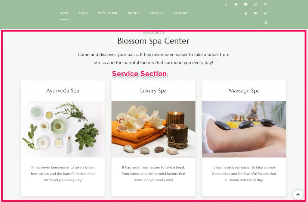 Service section demo blossom spa