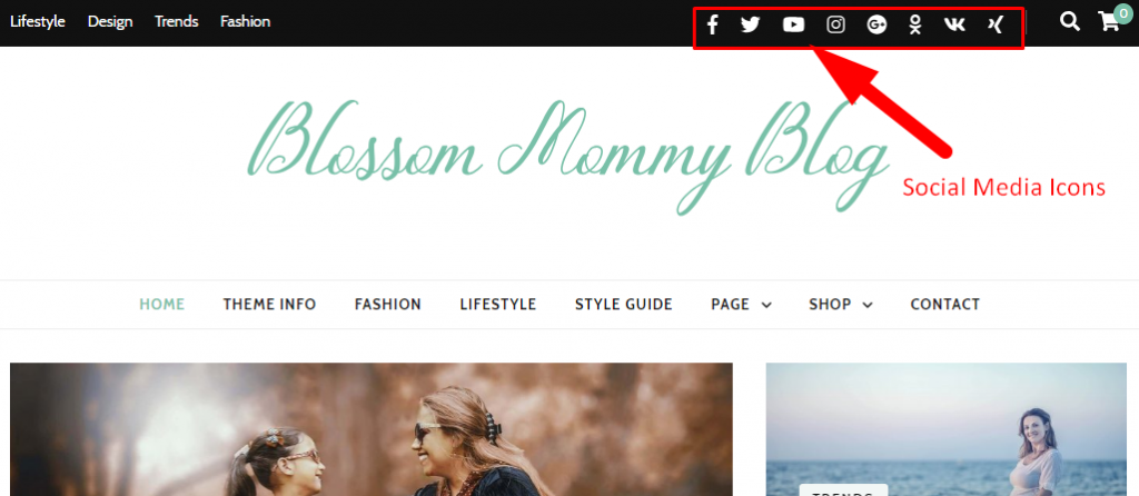 Social media links demo blossom mommy blog