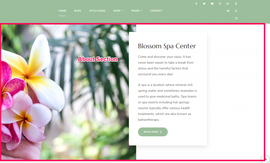 About section demo blossom spa