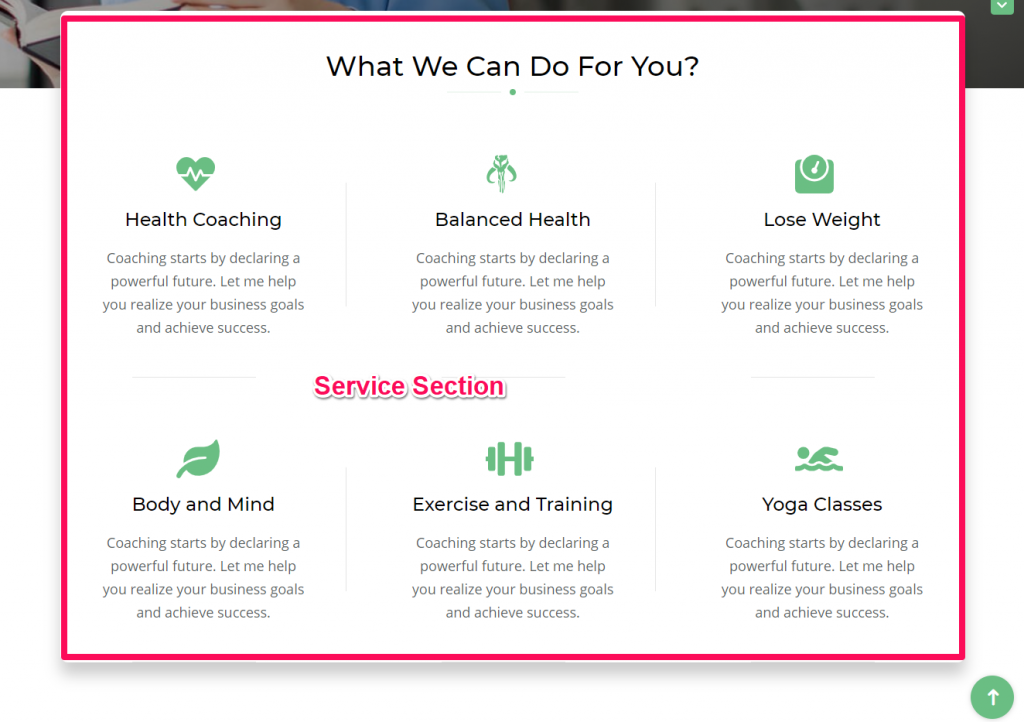 Service Section Demo Blossom Health Coach