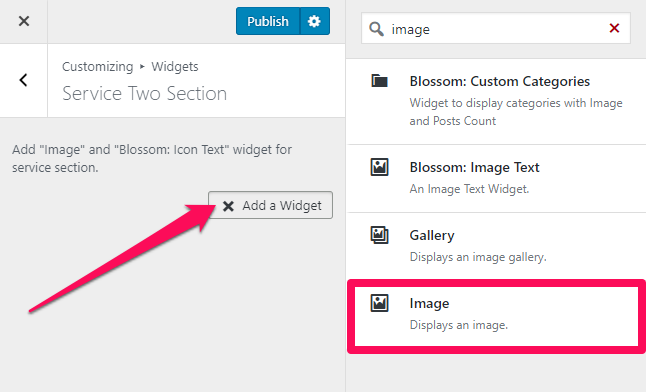 select image widget blossom spa