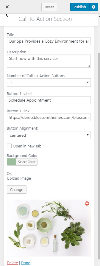 Configure call to action section blossom spa