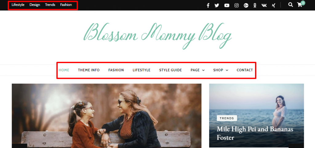 Navigation menu demo blossom mommy blog