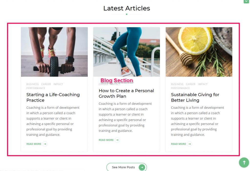 Blog section demo blossom health coach