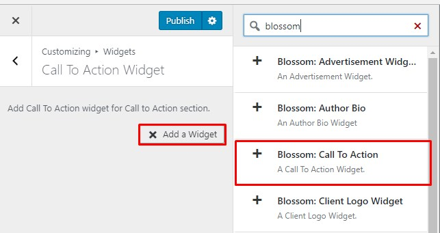 call to action widget blossom coach