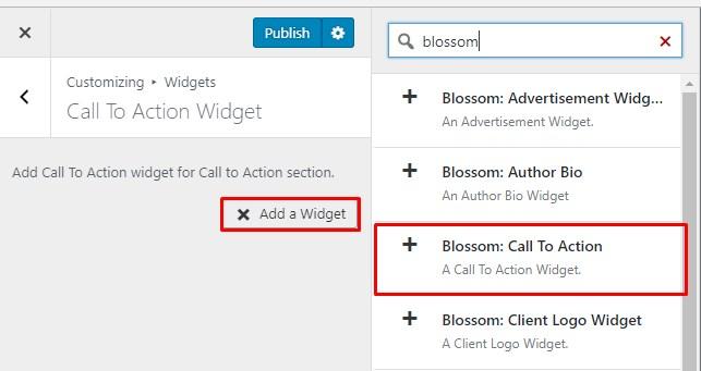 call to action widget blossom coach