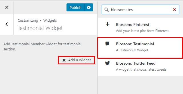 select testiimonial widget blossom coach