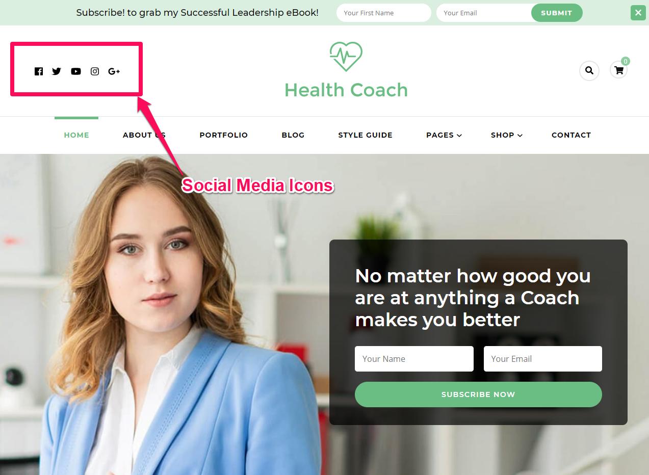 Social Media Icons Demo blossom health coach