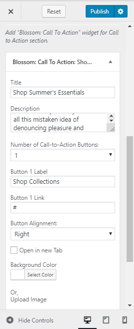 cta widget setting