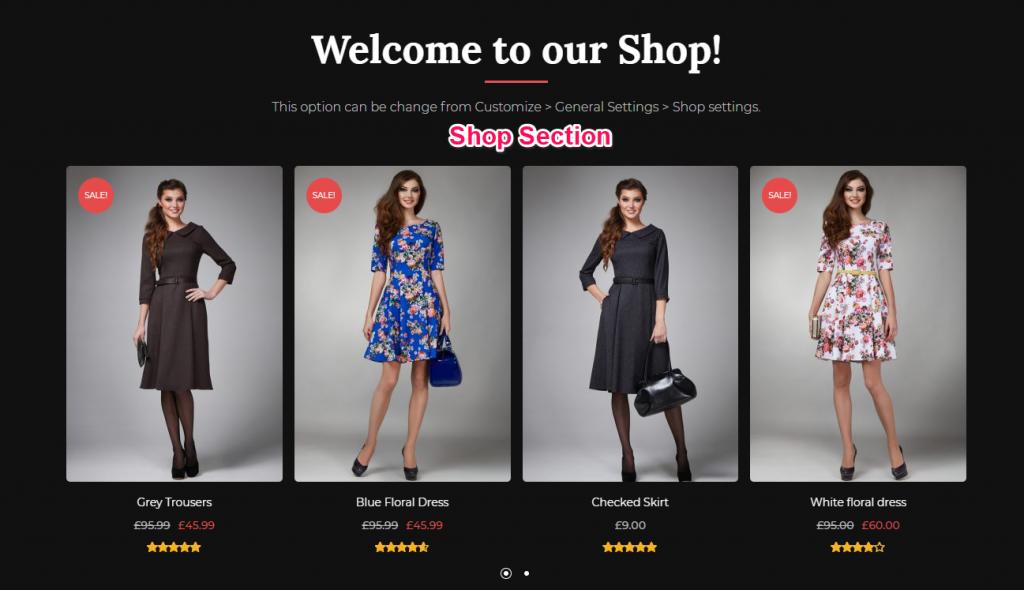 Shop section demo
