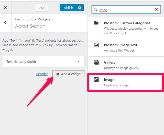 select an image widget