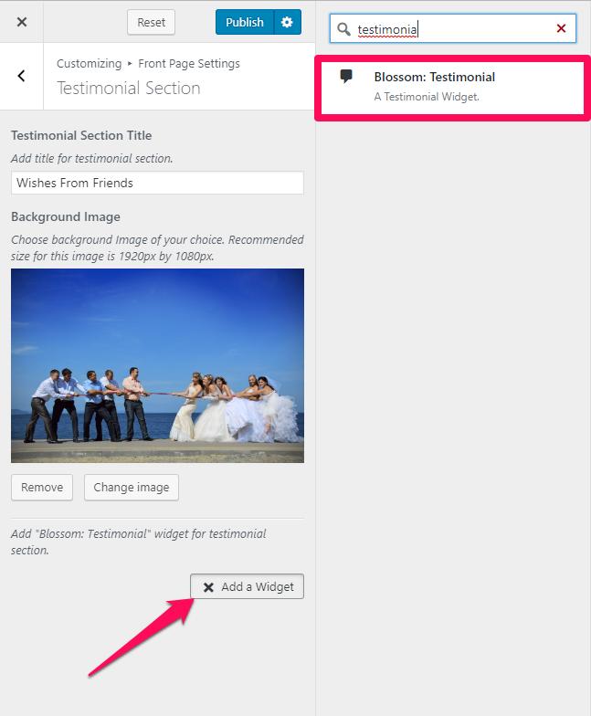 select testimonial widget